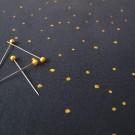 Souhvězdí Kozoroha (úplet)